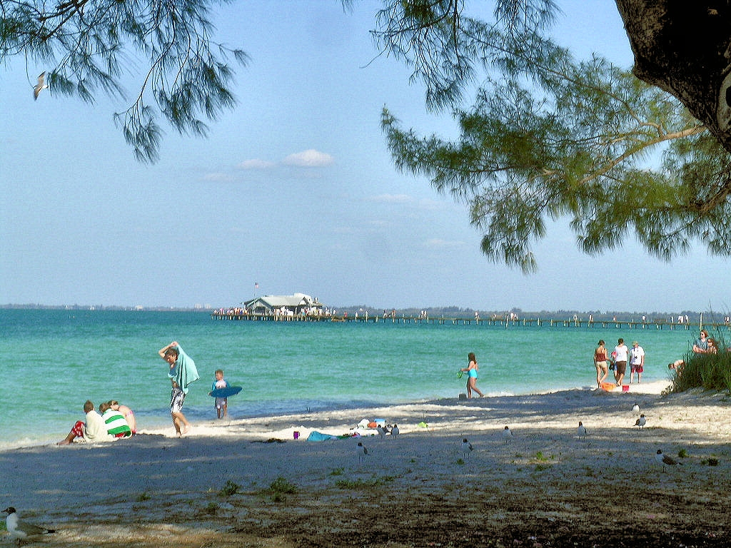 Things To Do In Tampa Bay Area Dolphin Watch Sunset Cruise Snorkeling Egmont Key And Shell