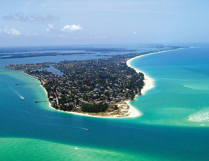 Anna Maria Island private charter, dolphins